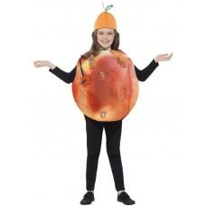 Roald Dahl James & The Giant Peach Costume